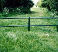 Regis Knee Rail - Trip Rail / Barrier Fencing