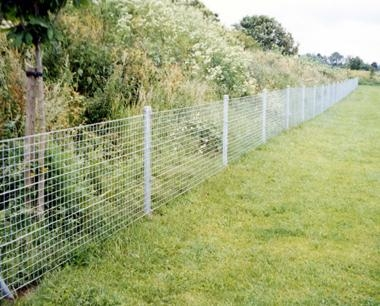 Galvanized only Economy System Weldmesh Fencing